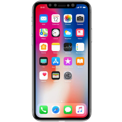 Защитное стекло Nillkin Privacy Glass Full Screen (3D AP+MAX) для Apple iPhone X / XS / 11 Pro